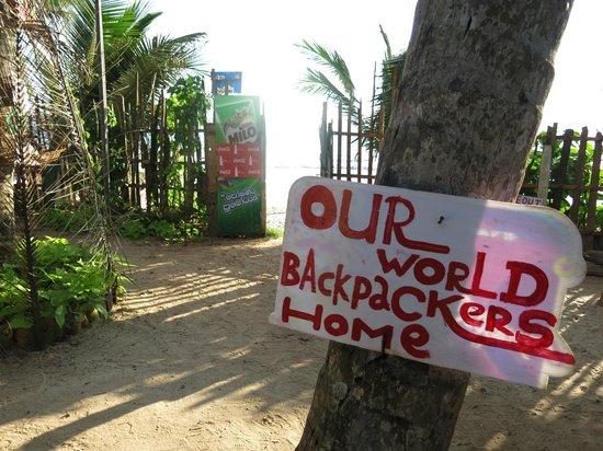 Our World : near beach