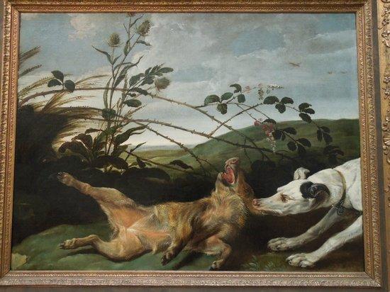 Fine Arts Museum (Museum voor Schone Kunsten) : Greyhound Catching a Young Wild Boar - Frans Snyders or Snijders - 1630 - Museum voor Schone Kun