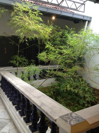 Courtyard @ Heeren Boutique Hotel: Plant feature