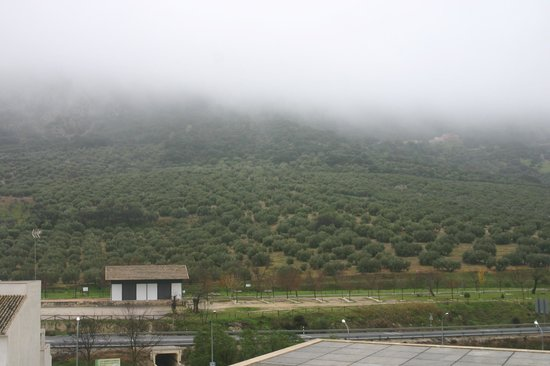 Hotel Mencia Subbetica: vista desde la habitación