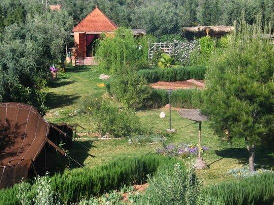 jardin1 picture of jardin bio aromatique nectarome marrakech tripadvisor. Black Bedroom Furniture Sets. Home Design Ideas