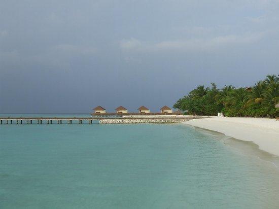 VOI Maayafushi Resort: la vista