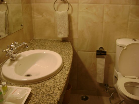 Golden Tulip Manali: A Clean Toilet