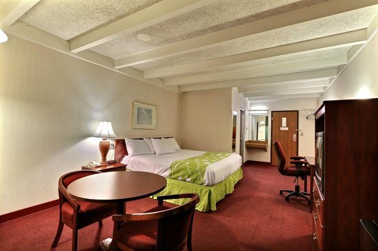 Econo Lodge: King Size Room