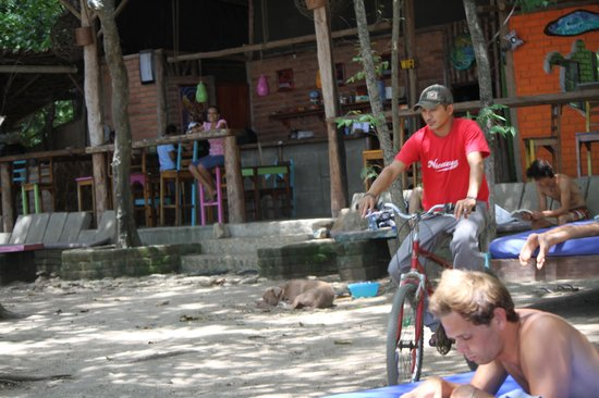 Camping Madera : an average day at cafe revolucion at camping playa madera