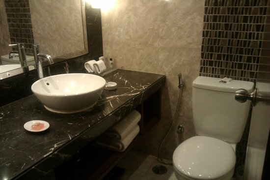 Radisson Jaipur City Center: Bathroom
