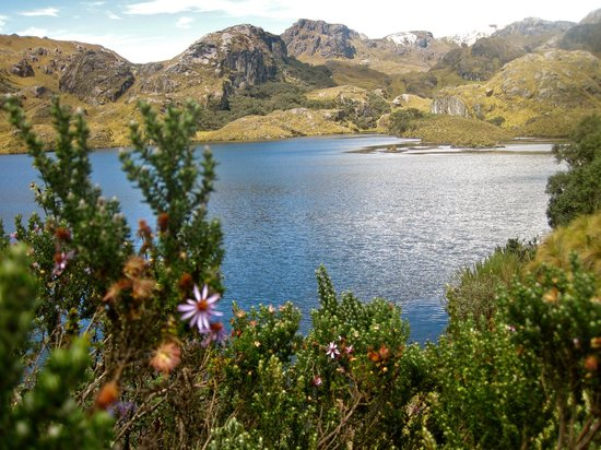 El Cajas National Park: View from Trail 1
