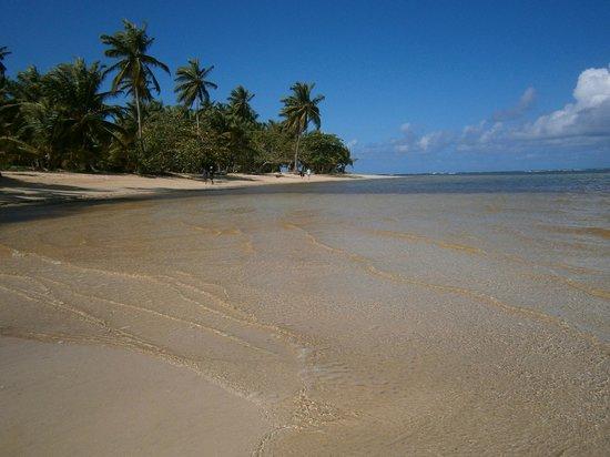 Grand Bahia Principe El Portillo: Des plages sublimes à gauche et à droite de l' hôtel