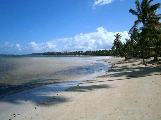 Grand Bahia Principe El Portillo: Des plages immenses
