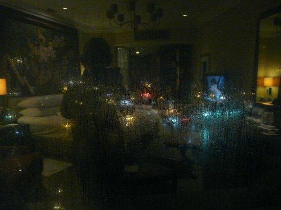 Shangri-La Hotel,Bangkok: Obscured river view!