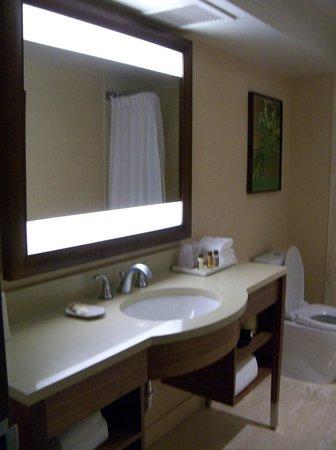 Sheraton Le Centre Montreal Hotel: Bathroom