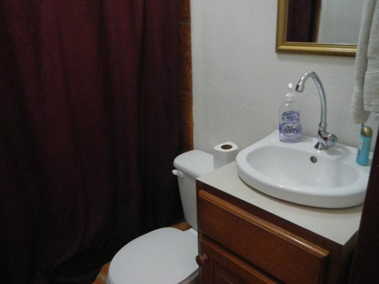 Western Guest House : The bathroom