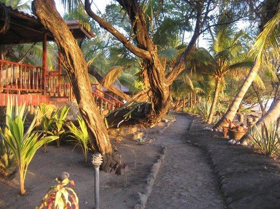 Redwood Beach Resort Walkway To Main Area