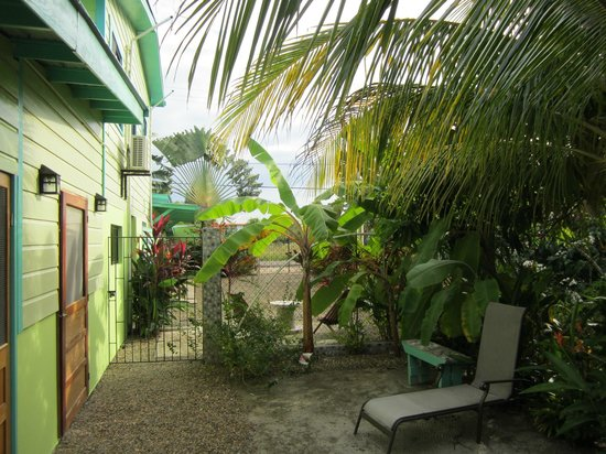 Casa Placencia Belize: Out my front door.