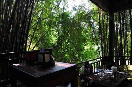 Dyen Sabai Restaurant: Caché dans les bambous