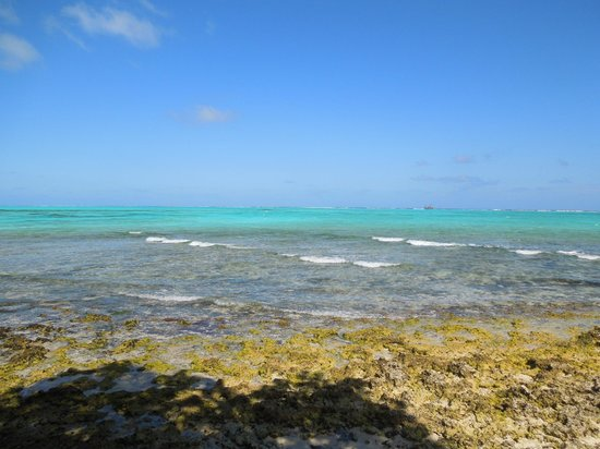 Bibi's Place: The shoreline is coral so make sure you ware watershoes