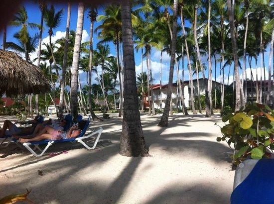 Grand Bahia Principe La Romana: Beach
