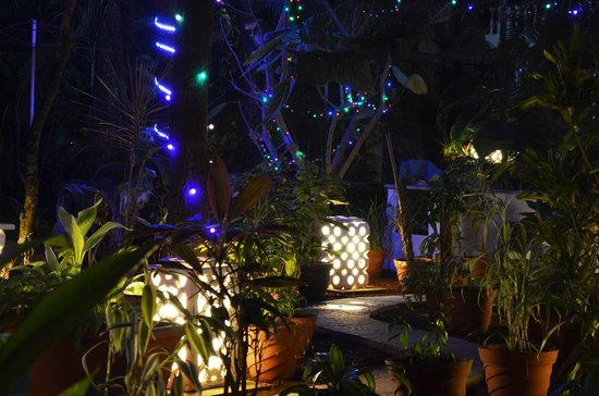 Tropicano Beach Resort: garden lights