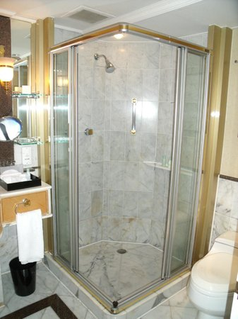 Grand Hyatt Taipei: Separated shower stall from the bathtub