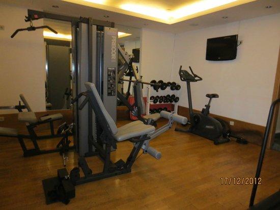 Eridanus Hotel: Gym