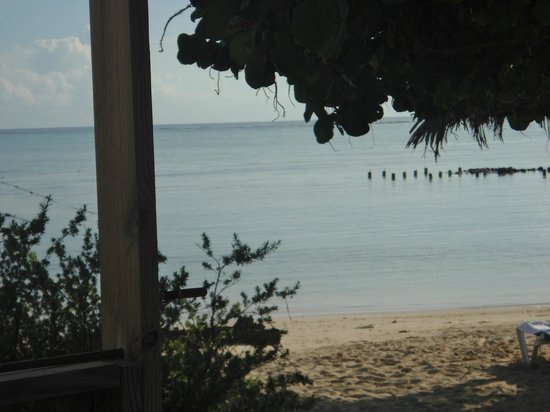 Sorobon Beach Resort: View from hammock