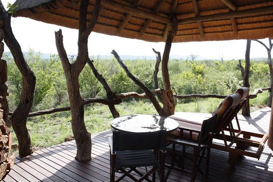 Madikwe Safari Lodge: our sun deck