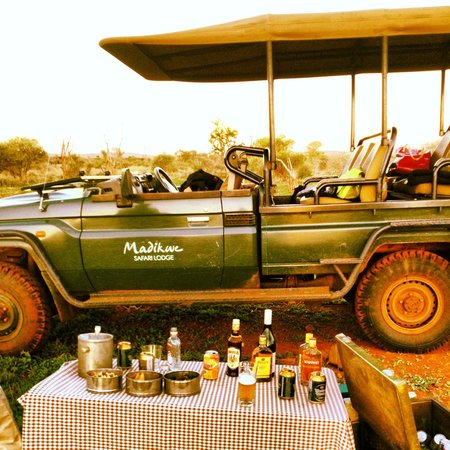 Madikwe Safari Lodge: sundowners