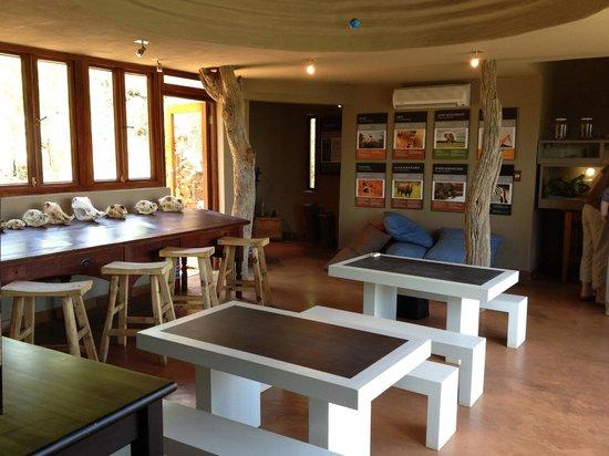 Madikwe Safari Lodge: Eco lodge