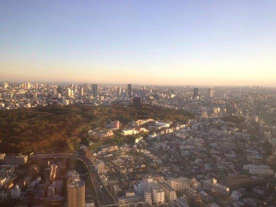 Park Hyatt Tokyo: City View from room