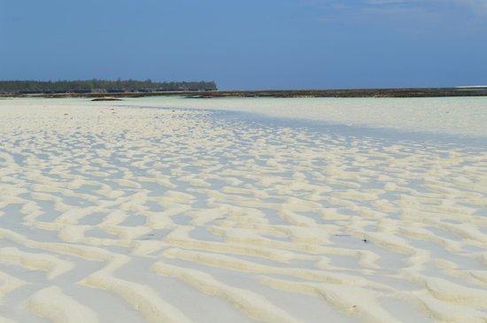 Palumboreef Beach Resort: acqua cristallina durante la bassa marea