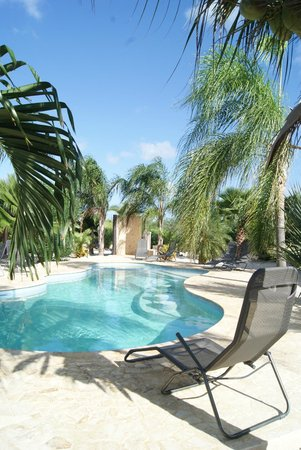 Bridanda Apartments Bonaire: Bridanda pool