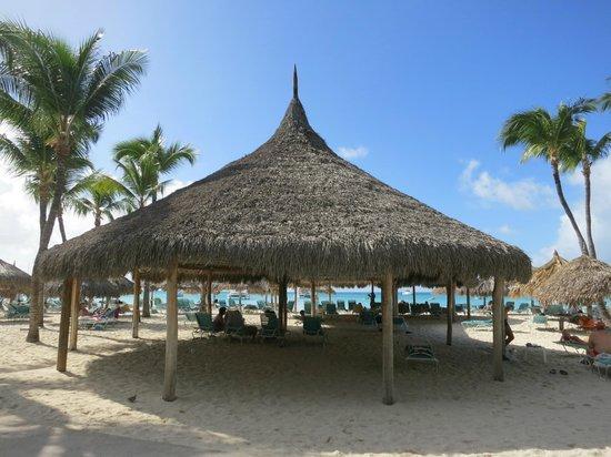 Hyatt Regency Aruba Resort And Huts On The Beach