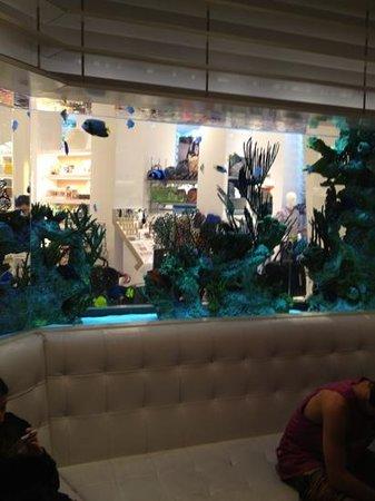 Loews Miami Beach Hotel: acquario nella hall