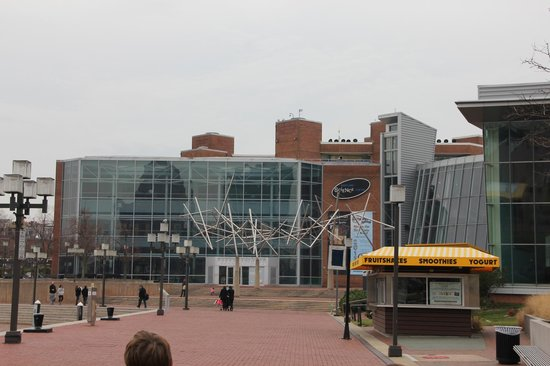 Maryland Science Center from the Inner Harbor