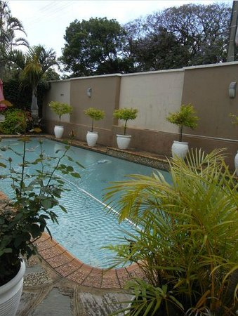 Duikerfontein Bed and Breakfast: good-sized pool