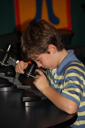 Maryland Science Center: Microscope