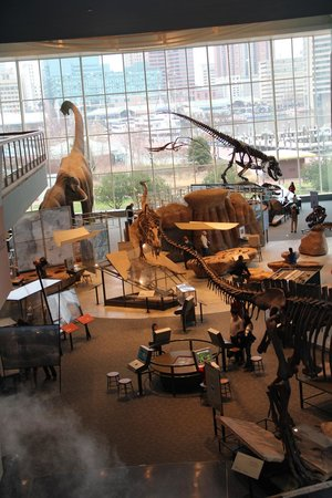 Maryland Science Center: Dinosaur Exhibit