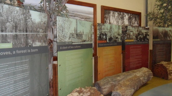 Barmah Forest Heritage and Education Centre: Timeline History of the Barmah Forest