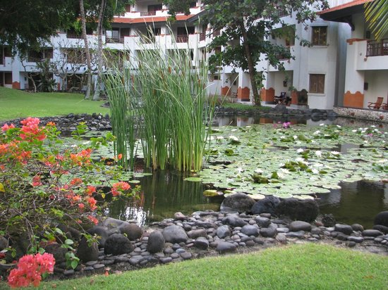 Grand Hyatt Bali: Pond behind our room