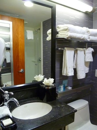 Hampton Inn Manhattan - Madison Square Garden Area: Hampton Inn bath