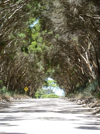 Kangaroo Island Gateway Visitor Information Centre: A beautiful country road.