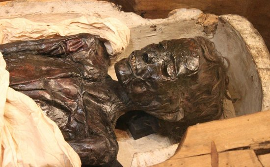The Great North Museum: A mummy