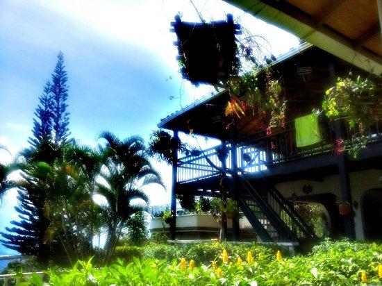 Hostal La Finca - Culturas Unidas : Main house