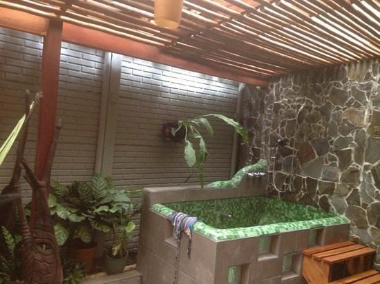 Jacuzzi En El Patio.Foto Del Jacuzzi En El Patio Interno De La Habitacion
