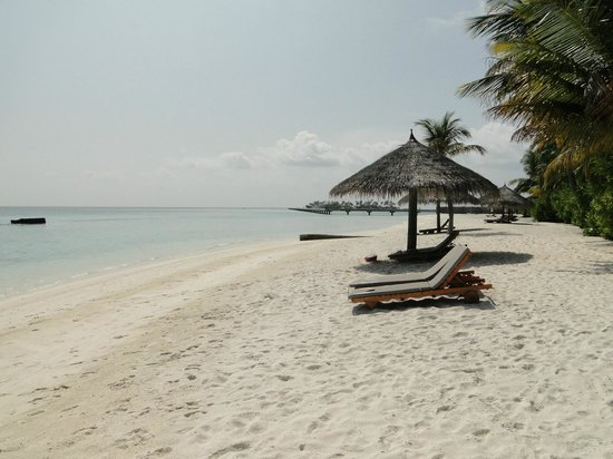 Conrad Maldives Rangali Island: beach