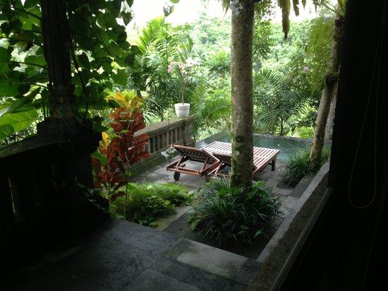 Bidadari Private Villas & Retreat: view from downstaiars