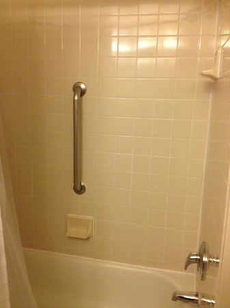 Embassy Suites by Hilton Chicago Downtown: Shower/Bath