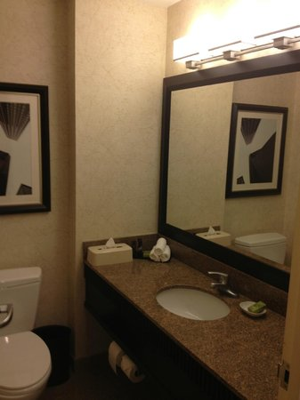 Embassy Suites by Hilton Chicago Downtown: Updated Bathroom