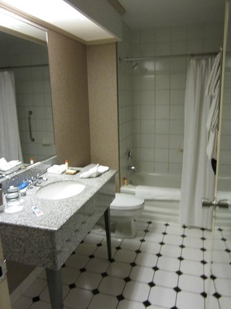 Wyndham Grand Chicago Riverfront: Bathroom