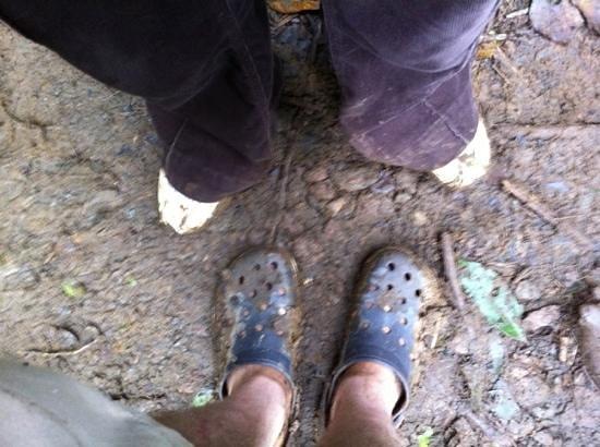 Tenorio National Park : muita lama: vá com sapato adequado